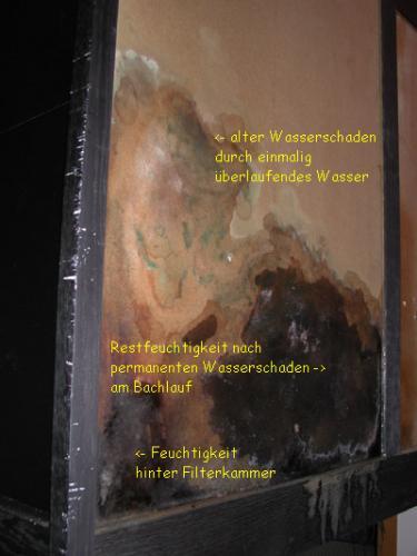 rueckwand wasserfleck DSCN1113